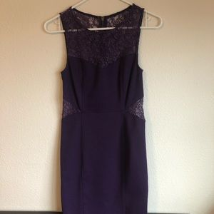 Purple Dress with floral mesh